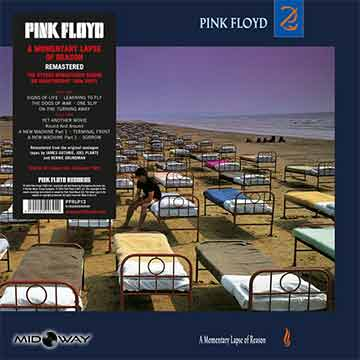 Pink Floyd | Momentary Lapse Of Reason