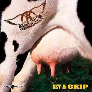 Aerosmith Get A Grip (Lp)