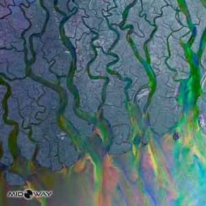 Alt-J | An Awesome Wave (Lp)