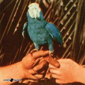 Andrew Bird | Are You Serious (Lp)