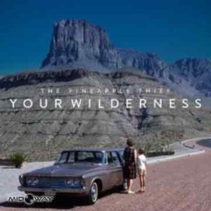 Pineapple Thief | Your Wilderness (Lp)