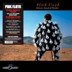 Pink Floyd | Delicate Sound Of Thunder( 2-LP )