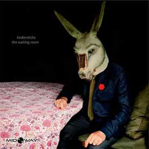 De vinyl album van de band Tindersticks met de titel The Waiting Room (Lp)