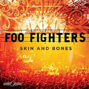 Vinyl, album, Foo, Fighters, Skin, And, Bones, Lp