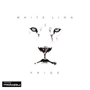 White, Lion, Pride